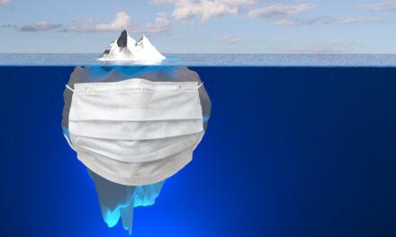 21.04.21 Online-Veranstaltung: Maskenaffäre – Spitze eines Eisberges